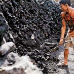 Coal shipments at major ports rise 11 per cent to 161 MT in FY19